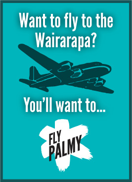 It's easy to get here - Fly Palmy!