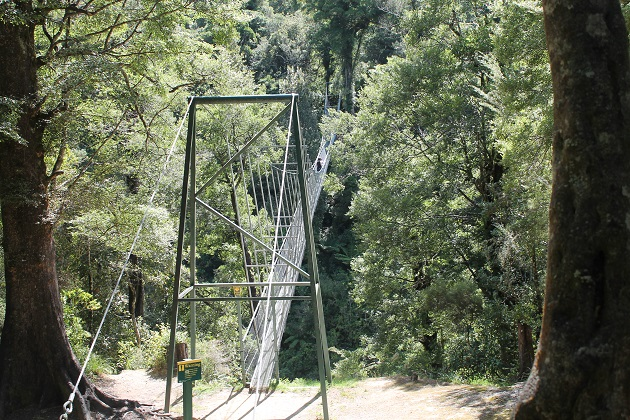Waiohine Gorge, Carterton