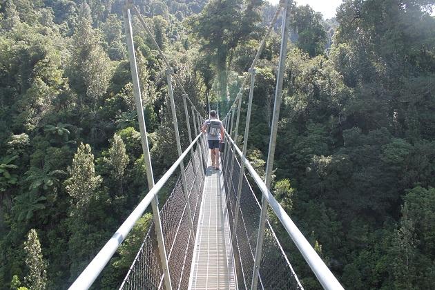 Waiohine Gorge, Tararua Forest Park, Carterton