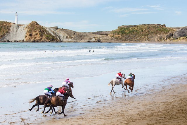 Horse racing on the beach at Castlepoint