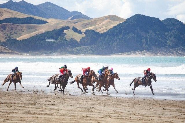 Castlepoint Beach Races