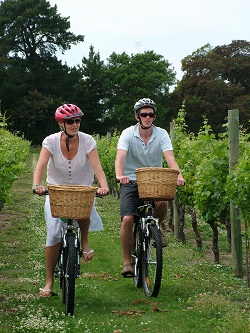 Cycling the Vines tile