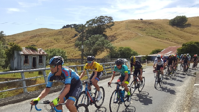Typical Wairarapa scenery on a road ride
