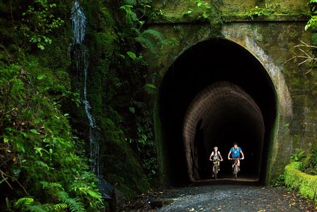 Remutaka Cycle Trail Tunnel