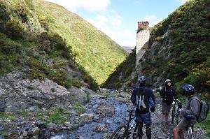'Siberia' on the Rimutaka Cycle Trail