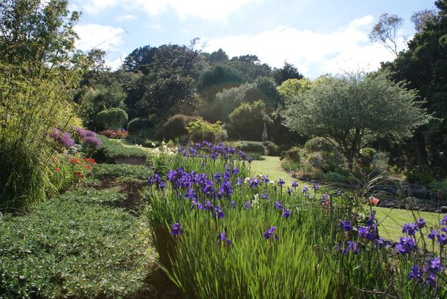Maru Manu garden Featherston