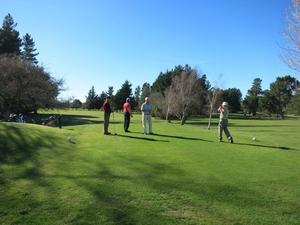 Teeing off at Martinborough Golf Club