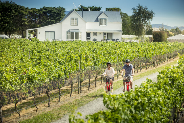 Cycling the Vines