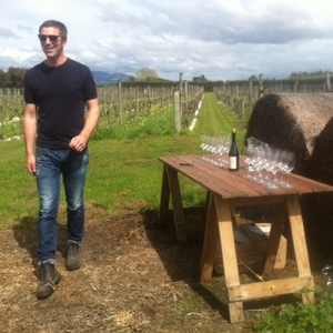 Martinborough Wine Walks