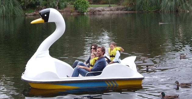 Pedal boats at Queen Elizabeth Park, Masterton