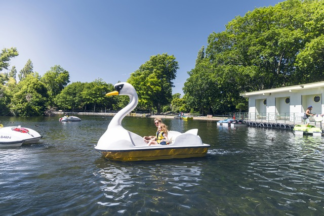 Pedal Boats at QEII park