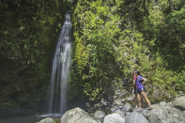 Waiohine Gorge Waterfall