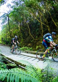 Cycling in Wairarapa