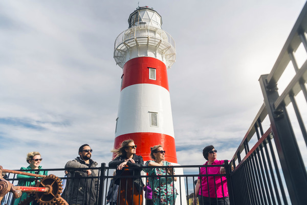 Visit Cape Palliser on this tour