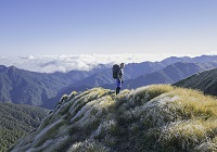 Tararua Forest Park - Tourism information from Destination Wairarapa
