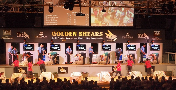 Golden Shears - the Grand final is so exciting!