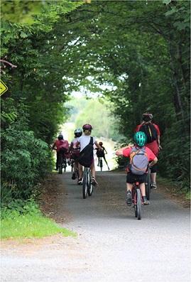 Cycling in Greytown